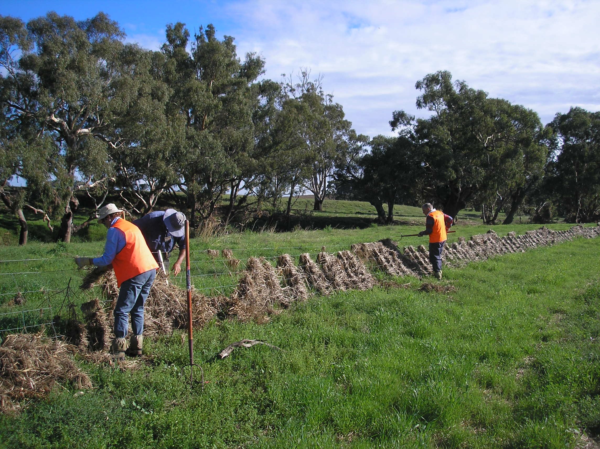 BlazeAid volunteers clearing a fence after the 2011 floods